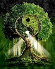 Nous sommes Un comme le reflète l'énergie vitale de l'Arbre de vie: Ce qu'on voit réfléchi l'intérieur vers l'extérieur
