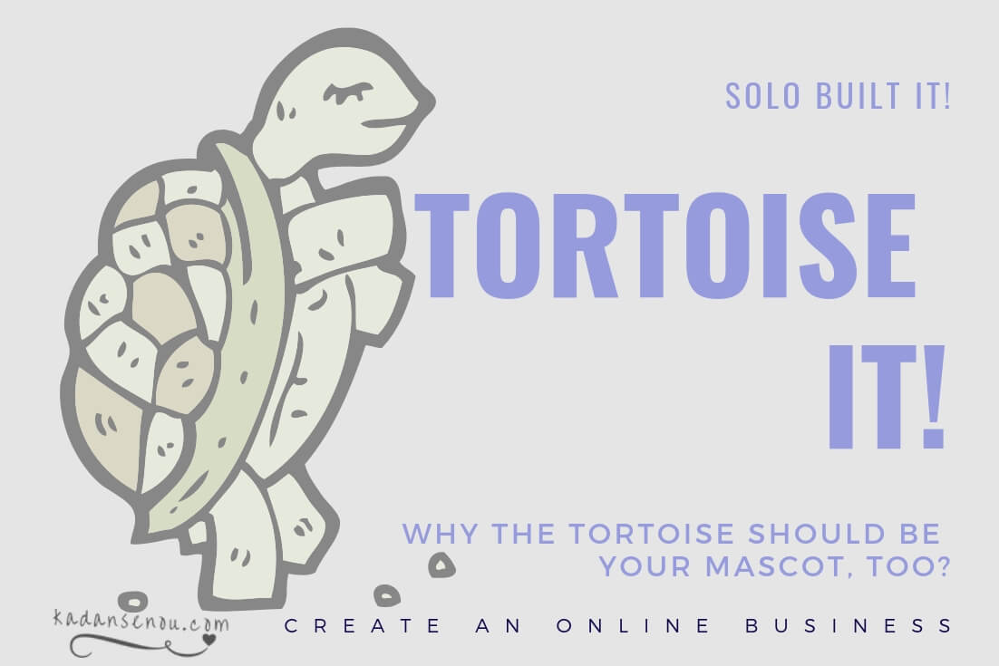 How to wisely start a business online and thrive mindfully? Tortoise It! with Solo Built It! (SBI!)