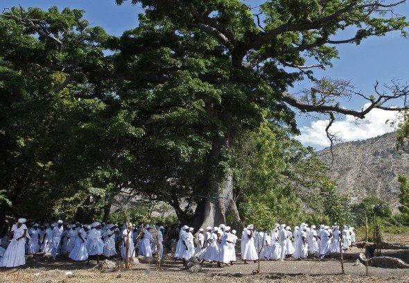 Clairière de rassemblement sous le Mapou, arbre sacré quant à la mémoire des principes de Bwa Kayiman, et sous le ciel bleu de Souvenance. | Principe de cercles sacrés, Ayiti: 12 Principes Bwa Kayiman